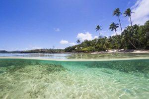 Savasi Island Resort Fiji Snorkelling