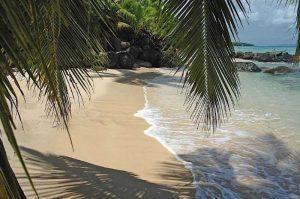 Taveuni Palms Fiji Beach