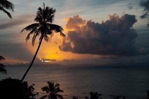 Taveuni Palms Fiji Sunset