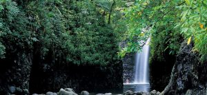 Taveuni Island Resort Spa Accommodation Waterfall