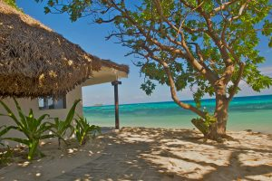 Hi FCI 65608978 castaway island fiji guestroom beach bure1