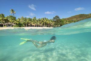 Snorkelling Landscape